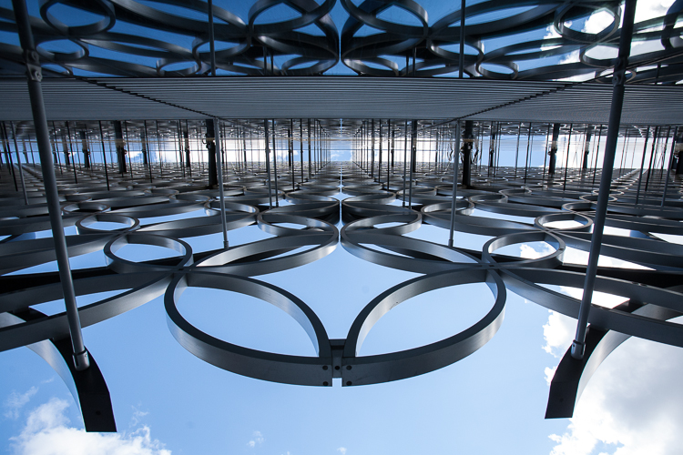 Interlocked circles of the metal cladding reflecting on the huge space of the library glass panels