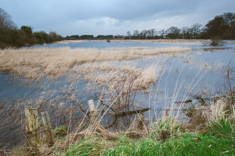 Flooded marshland at Kingholm Quay