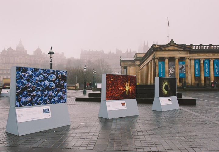 The Living Lights exhibition in Edinburgh