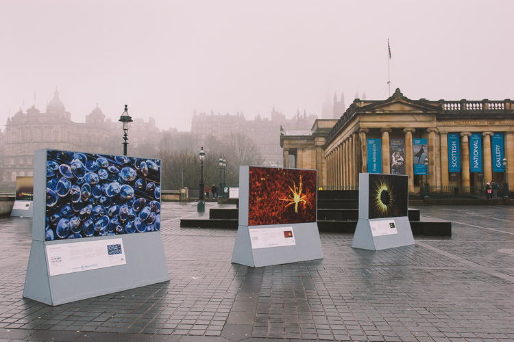 Living Lights outdoor exhibition in Edinburgh