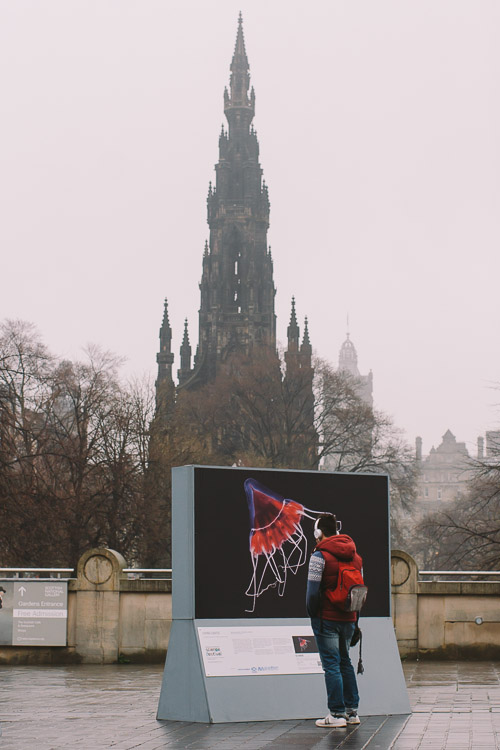 The Living Lights exhibit with the Scott Monument in the background