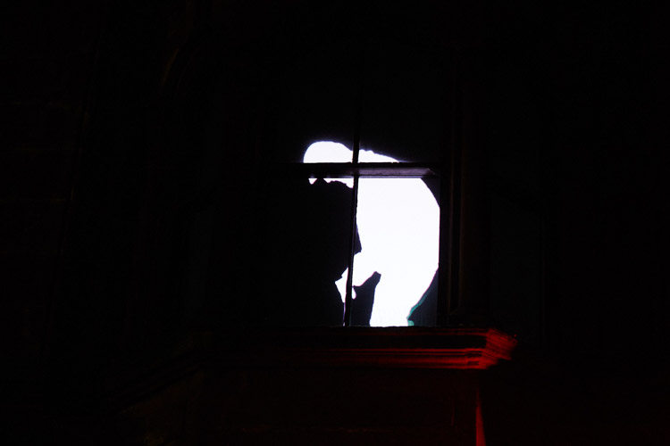 D-LUX illuminations: a creepy ghost hurries across the window frames