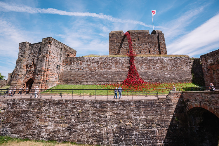 Poppies sculpture viewed from inside the castle courtyard