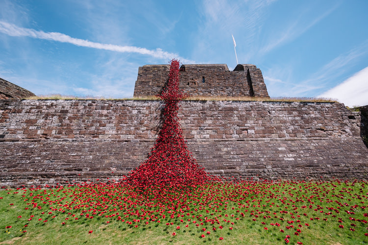 Poppies Weeping Window Carlisle #PoppyTour - flowers flowing on the keep and pooling down at the wall