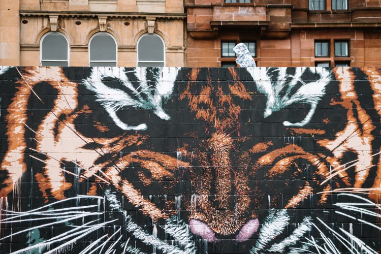 Glasgow Tiger Mural by James Klinge on Clyde Street, part og Glasgow Mural Trail