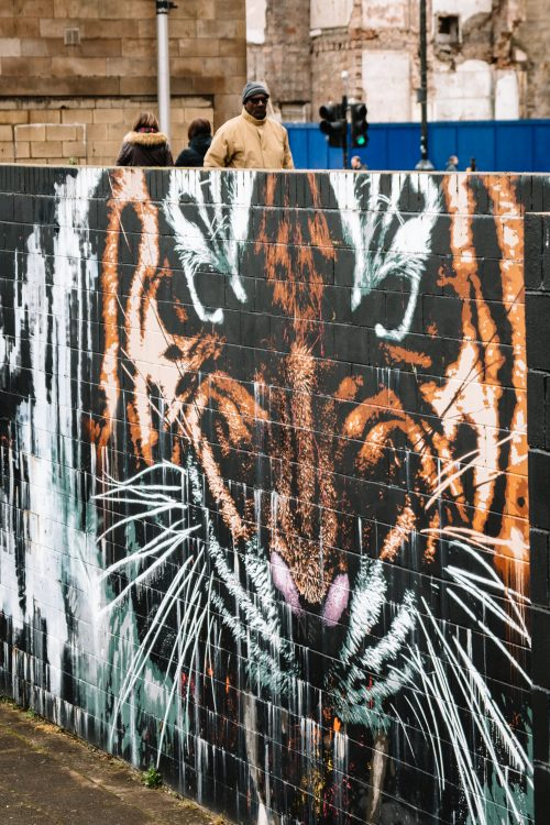 Passers by on Clyde Street above the Tiger mural