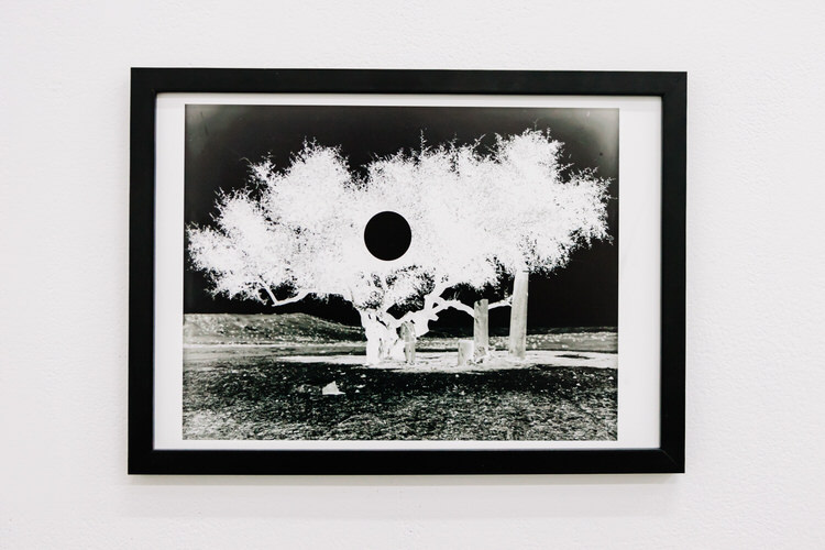A framed negative print based on a positive image sourced from The Library of Congress