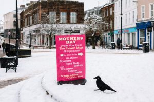 Unexpected snow on Mother's day in Fountain Square, Dumfries