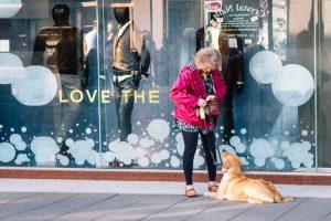 Love the ... DOG!