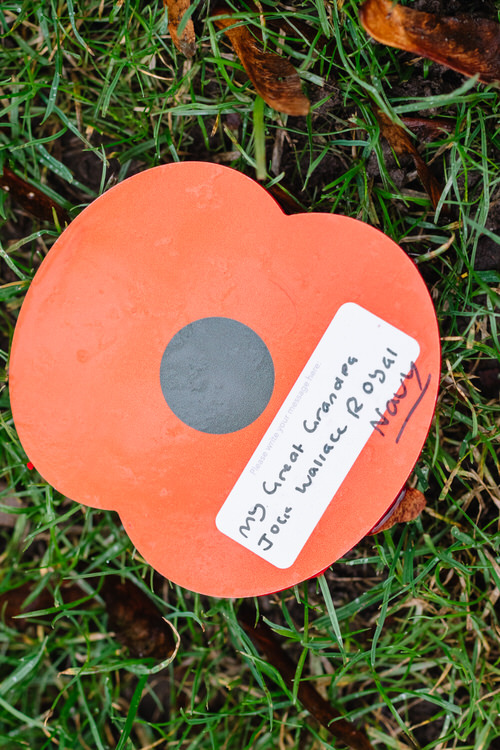 Large poppy with a message about Great Grandpa John Wallace of Royal Navy
